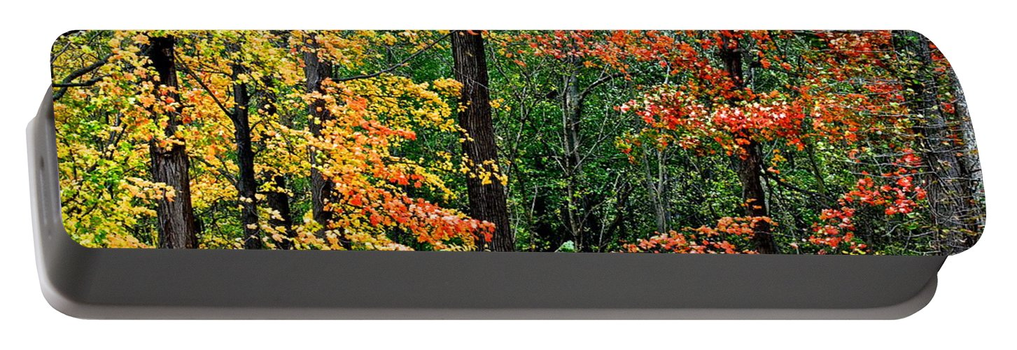 Autumn Portable Battery Charger featuring the photograph Autumn by Frozen in Time Fine Art Photography