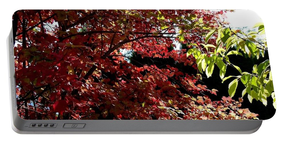 Autumn Snowball Bush Portable Battery Charger featuring the photograph Autumn Snowball Bush by Will Borden