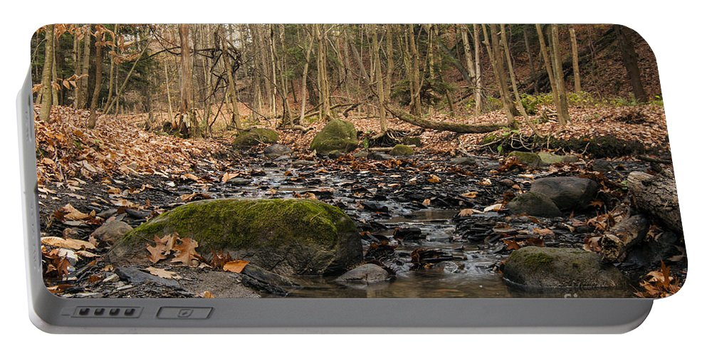 Waterfall Portable Battery Charger featuring the photograph Autumn Tributary Path by Darleen Stry