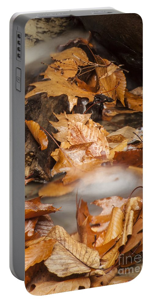 Waterfall Portable Battery Charger featuring the photograph Autumn Water Eddy by Darleen Stry