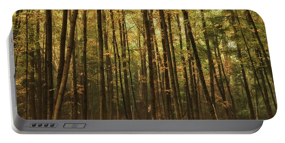 Autumn Portable Battery Charger featuring the photograph Autumn Woods by Karol Livote