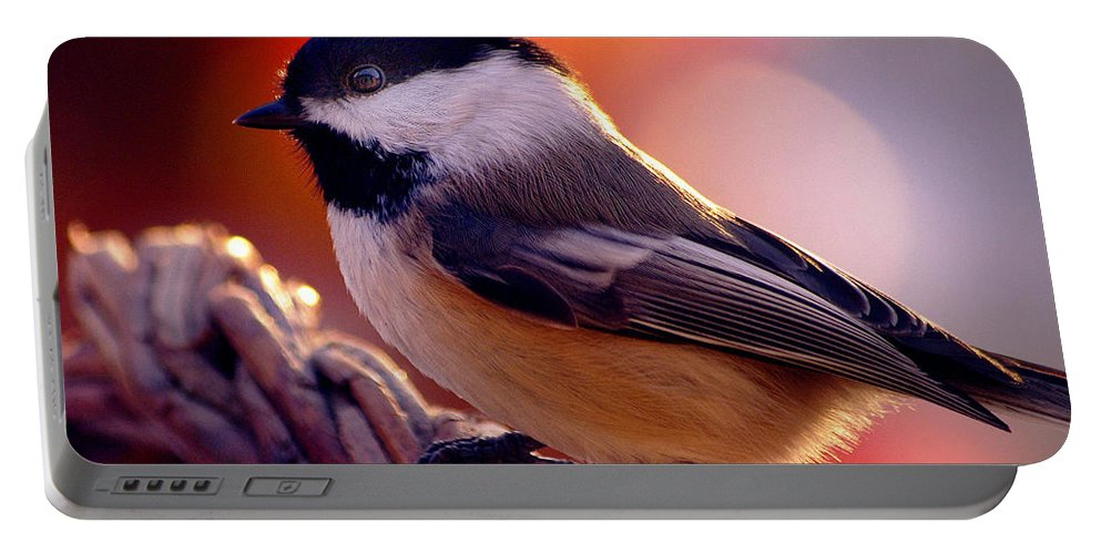 Inspirational Portable Battery Charger featuring the photograph Autumns Song... by Arthur Miller