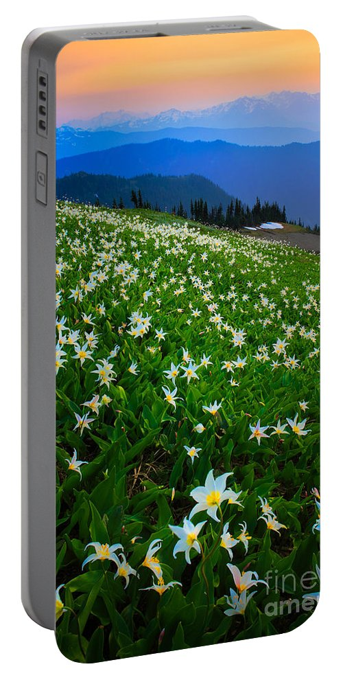 America Portable Battery Charger featuring the photograph Avalanche Lily Field by Inge Johnsson