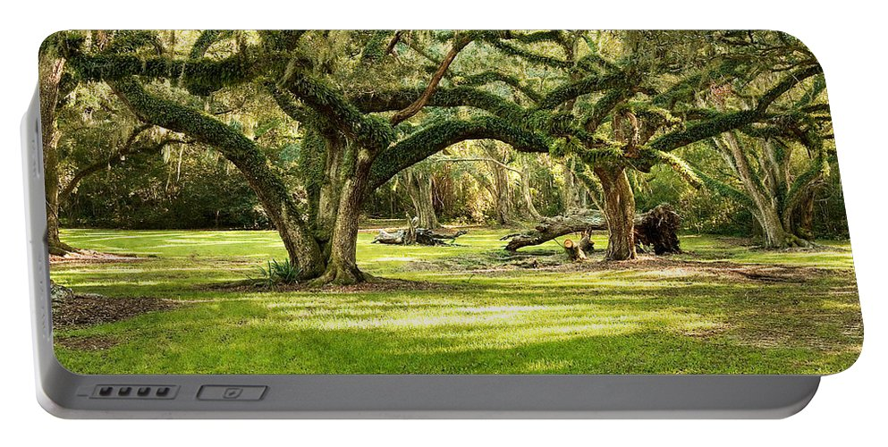Oak Trees Portable Battery Charger featuring the photograph Avery Island Oaks by Scott Pellegrin