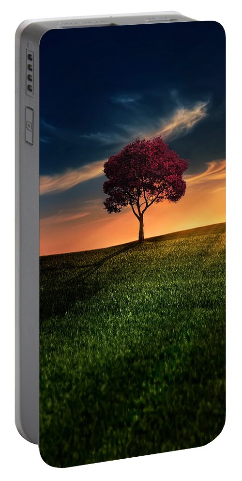 Agriculture Portable Battery Charger featuring the photograph Awesome Solitude by Bess Hamiti