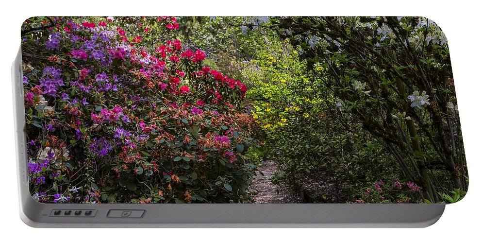 Azalea Portable Battery Charger featuring the photograph Azalea Trail by Garry Gay
