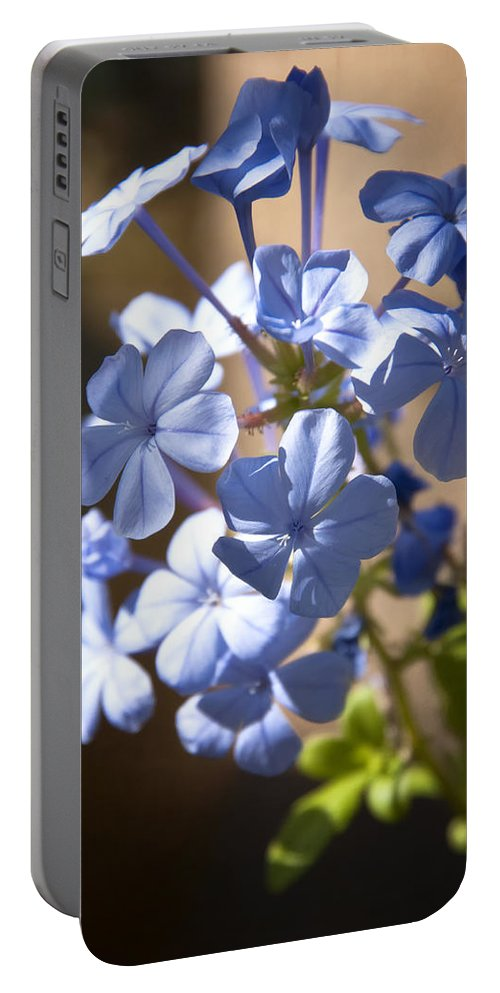 Blue Wildflowers Portable Battery Charger featuring the photograph Baby Blues by Saija Lehtonen