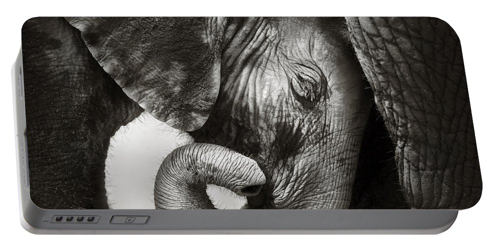 Elephant Portable Battery Charger featuring the photograph Baby elephant seeking comfort by Johan Swanepoel