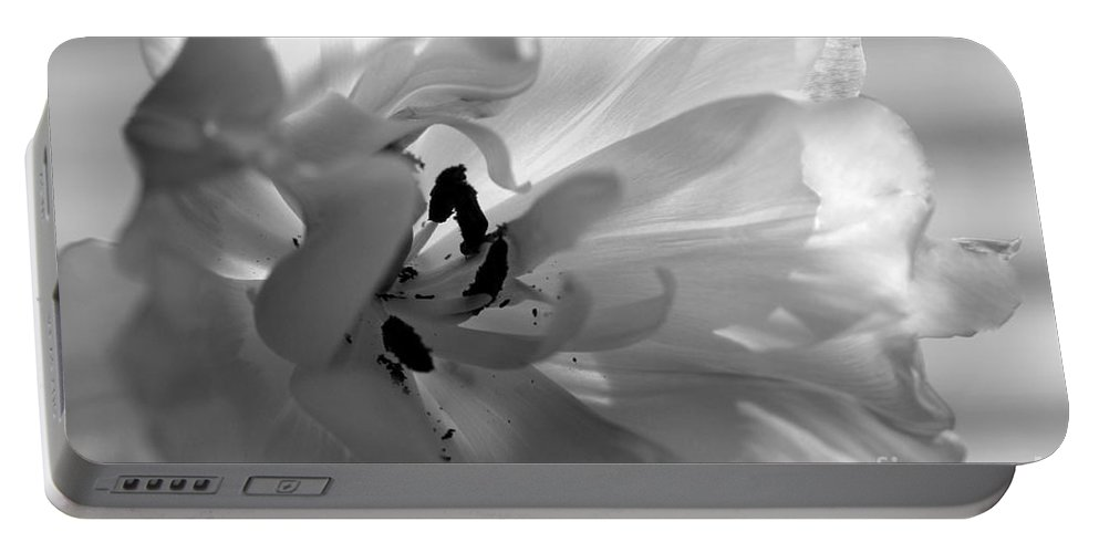 Tulip Portable Battery Charger featuring the photograph Backlit Black And White Tulip by Sharon Talson