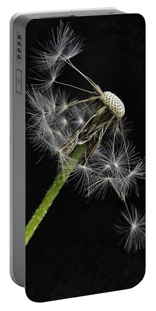 Balanced Portable Battery Charger featuring the photograph Balanced by Marianna Mills