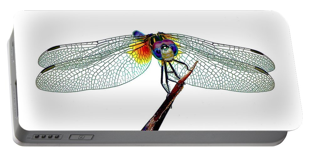 Dragonfly Portable Battery Charger featuring the photograph Balancing Act by Lisa Renee Ludlum