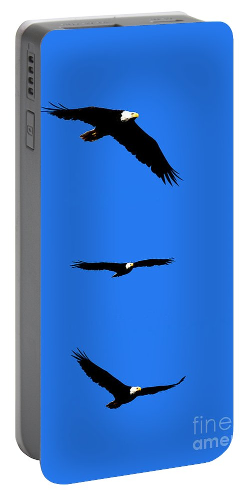 Eagle Portable Battery Charger featuring the photograph Bald Eagle Triptych by Thomas Marchessault