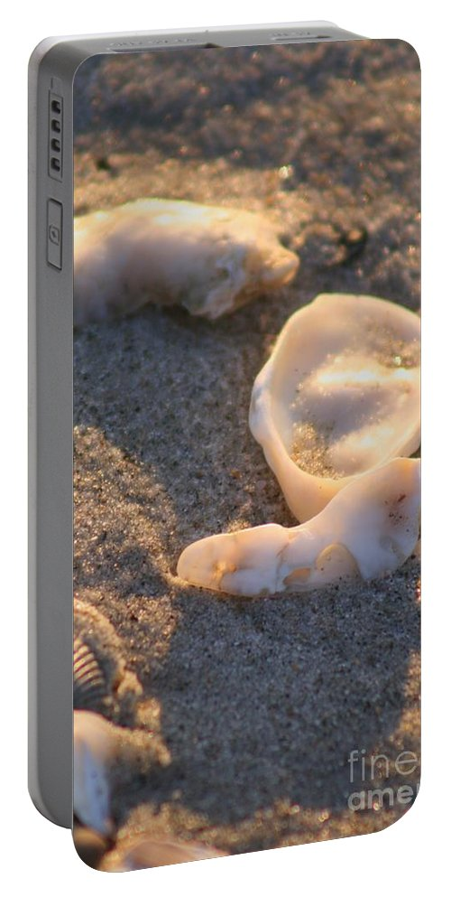 Shells Portable Battery Charger featuring the photograph Bald Head Island Shells by Nadine Rippelmeyer