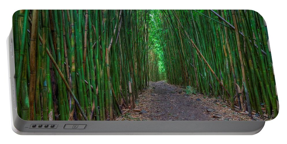 Bamboo Forest Portable Battery Charger featuring the photograph Bamboo Bliss by James Anderson