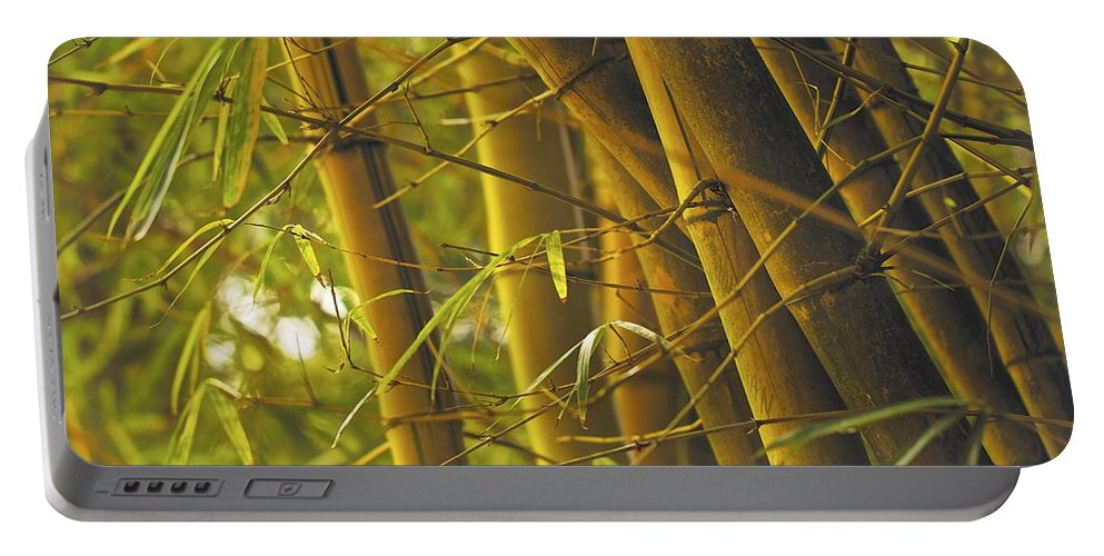 Bamboo Portable Battery Charger featuring the photograph Bamboo Gold by Jade Moon