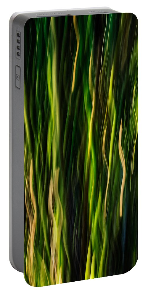 Bamboo Portable Battery Charger featuring the photograph Bamboo In Motion by David Kay