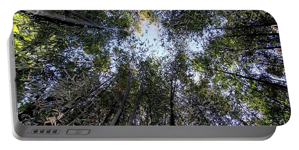 Nature Portable Battery Charger featuring the photograph Bamboo Sky by Ed Weidman