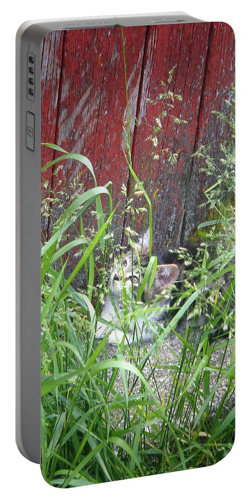 Barn Portable Battery Charger featuring the photograph Barn Kitten by April Patterson