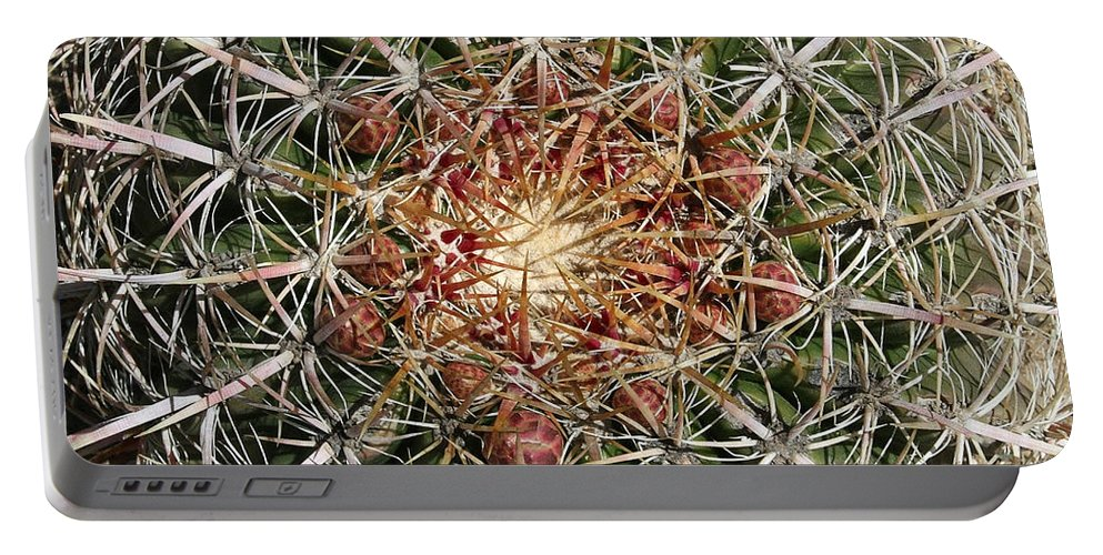 Barrel Cactus Portable Battery Charger featuring the photograph Barrel Cactus by Ellen Henneke