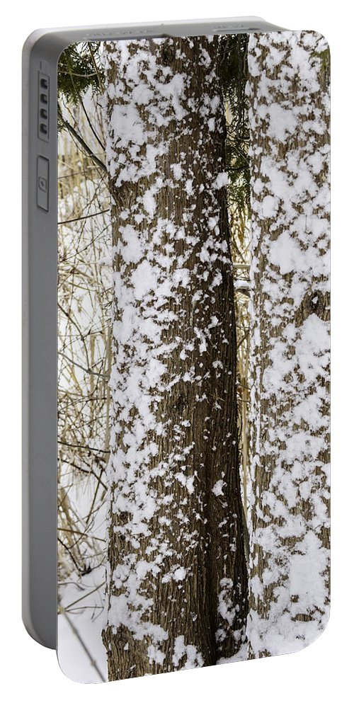Usa Portable Battery Charger featuring the photograph Battered By Winter Blizzard by LeeAnn McLaneGoetz McLaneGoetzStudioLLCcom