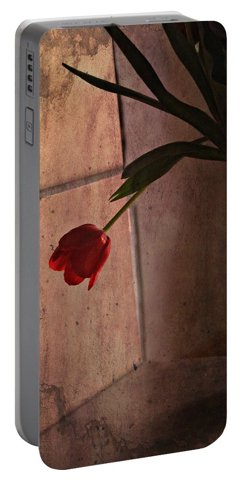 Valentine Portable Battery Charger featuring the photograph Be My Valentine by Katie Wing Vigil