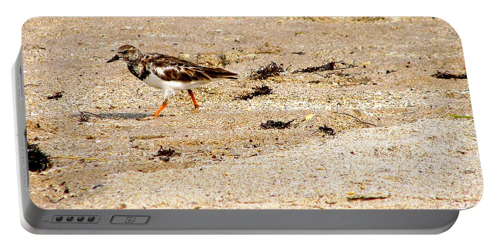 Bird Portable Battery Charger featuring the photograph Beach Bird 2 by Anita Lewis