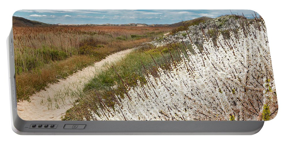 Cape Cod Portable Battery Charger featuring the photograph Beach Plums by Bill Wakeley