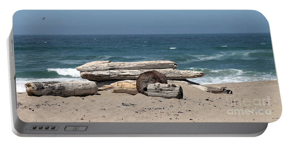California Portable Battery Charger featuring the photograph Beachy by Amanda Barcon