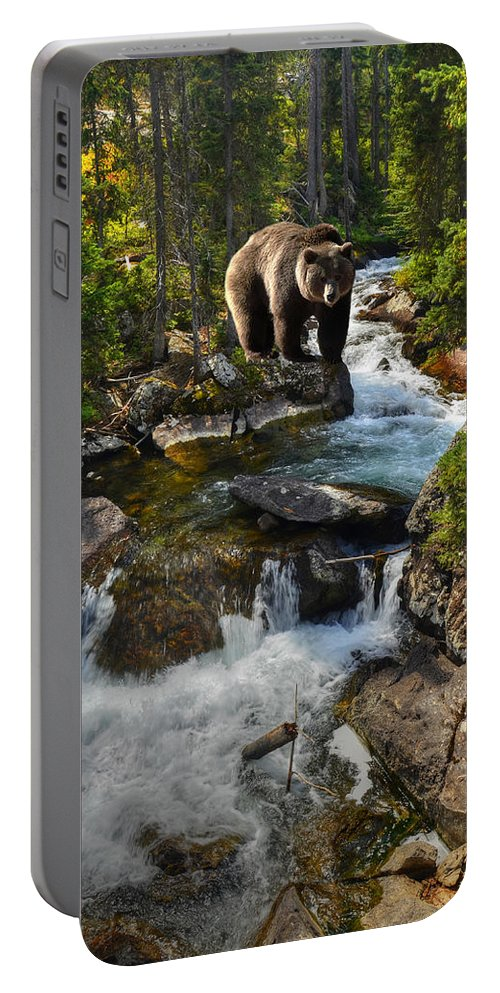 Grizzly Portable Battery Charger featuring the photograph Bear Necessity by Ken Smith