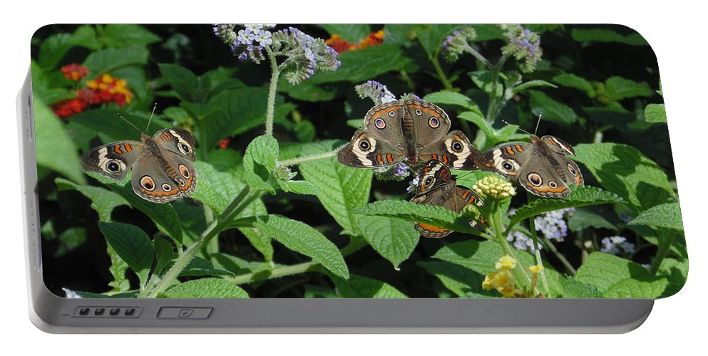 Nature Portable Battery Charger featuring the photograph Beautiful Buckeyes by Stephanie Grant