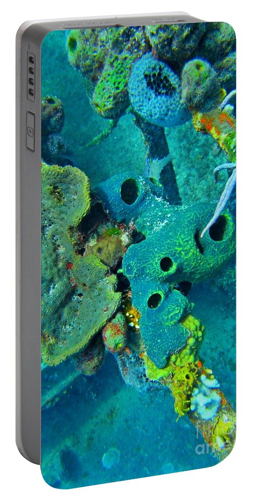 Coral Art Portable Battery Charger featuring the photograph Beautiful Coral by John Malone