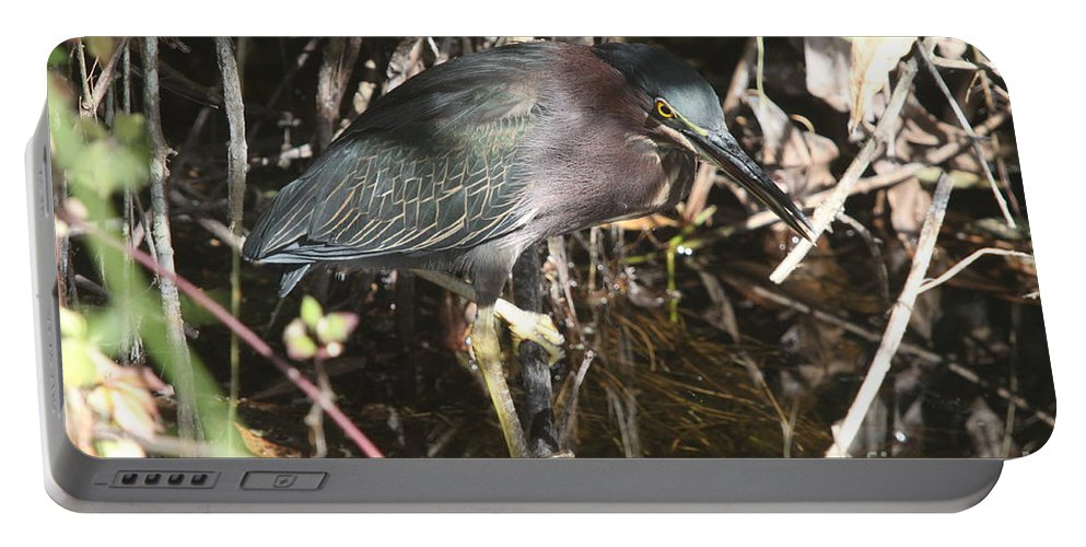 Little Green Heron Portable Battery Charger featuring the photograph Beautiful Heron by Christiane Schulze Art And Photography