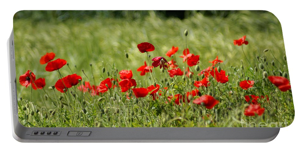 Poppies Portable Battery Charger featuring the photograph Beautiful Poppies 1 by Carol Lynch