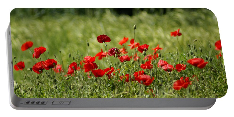 Poppies Portable Battery Charger featuring the photograph Beautiful Poppies 3 by Carol Lynch