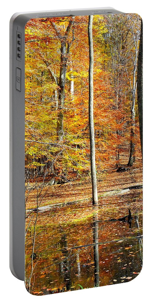 Landscape Portable Battery Charger featuring the photograph Beautiful by Frozen in Time Fine Art Photography