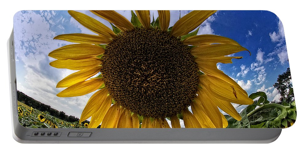 Sunflower Portable Battery Charger featuring the photograph Beautiful Sunflower by Alice Gipson