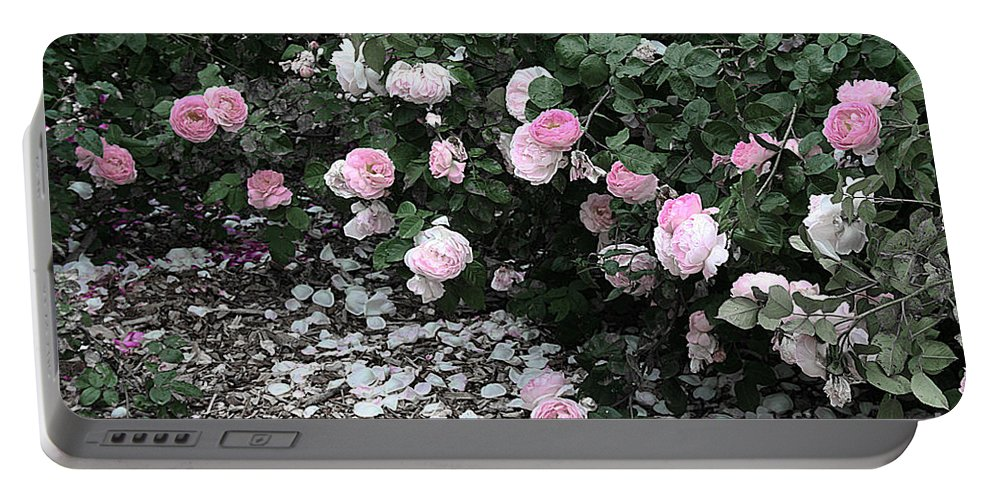 Flowers Portable Battery Charger featuring the photograph Beautiful Until The Last Petal Falls by Barbara McMahon