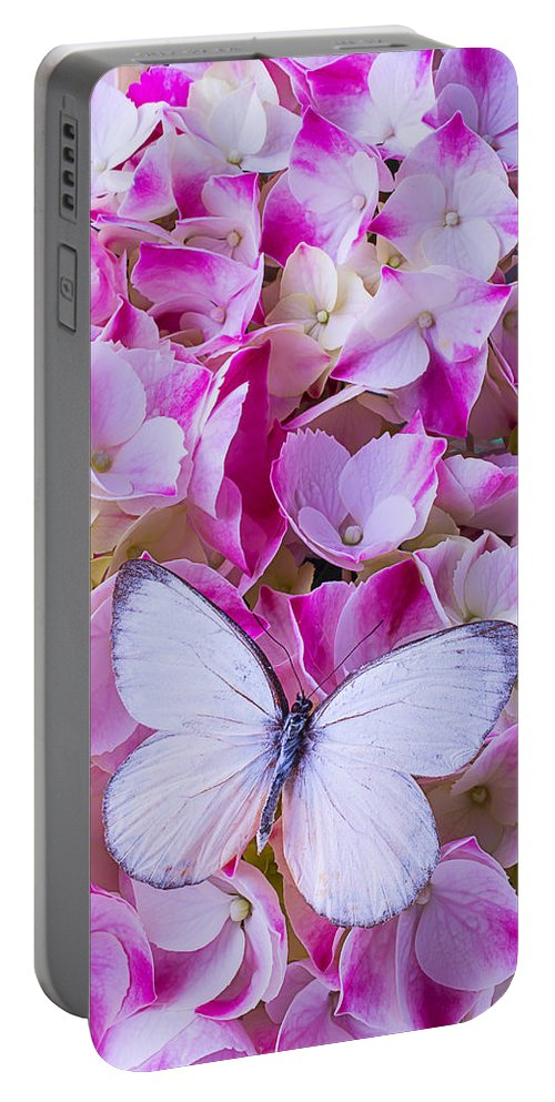 White Portable Battery Charger featuring the photograph Beautiful White Butterfly by Garry Gay