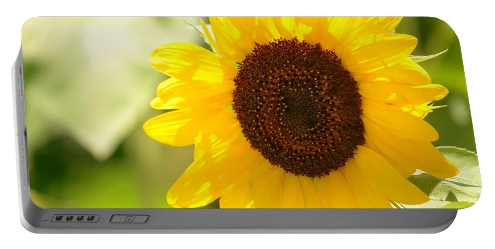 Beauty Beheld - Sunflower Portable Battery Charger featuring the photograph Beauty Beheld - Sunflower by Maria Urso