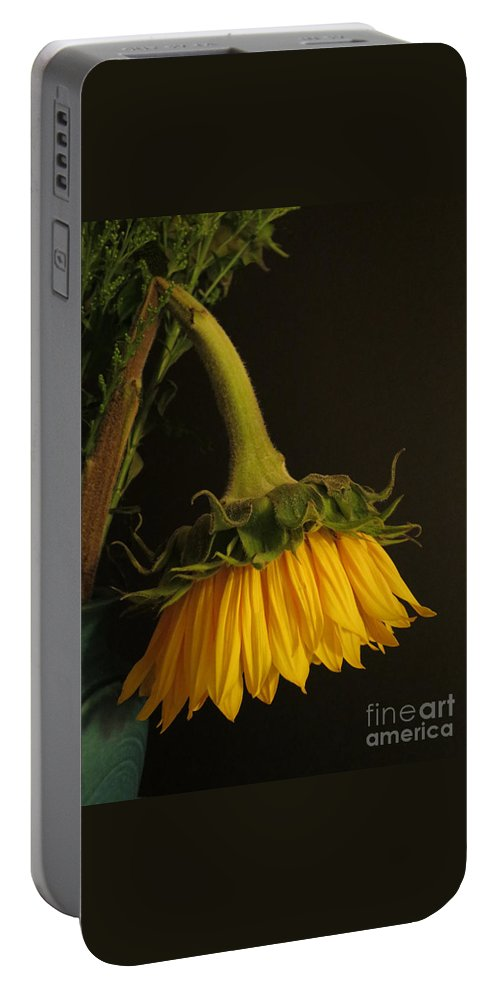 Sunflower Portable Battery Charger featuring the photograph Beauty Bows by Ann Horn