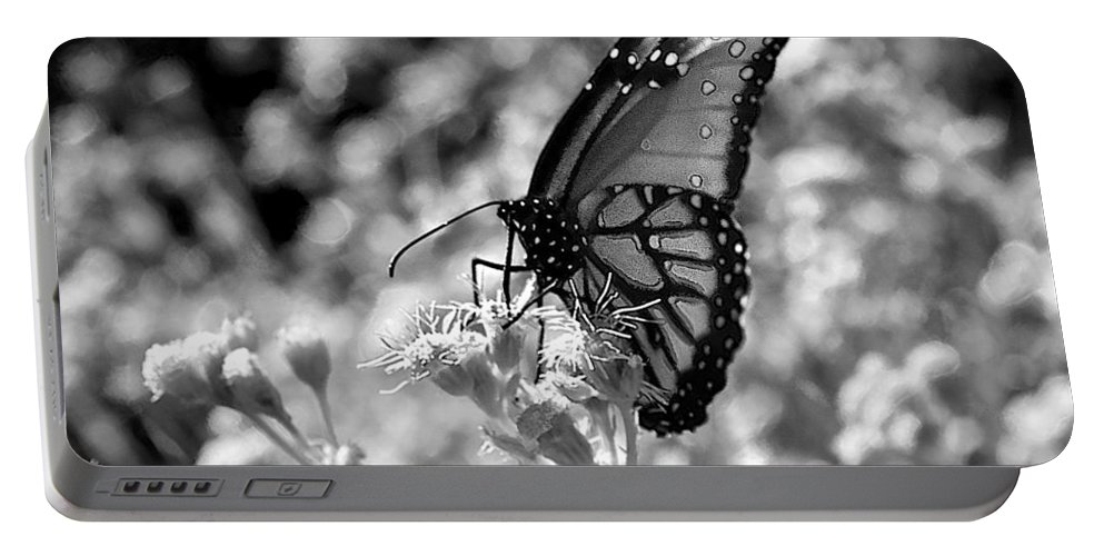 Butterfly Portable Battery Charger featuring the photograph Butterfly Beauty In Nature by Kristina Deane