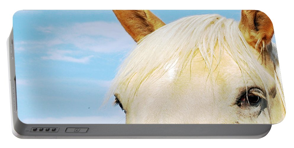 Horse Portable Battery Charger featuring the photograph Beauty by Molly McPherson