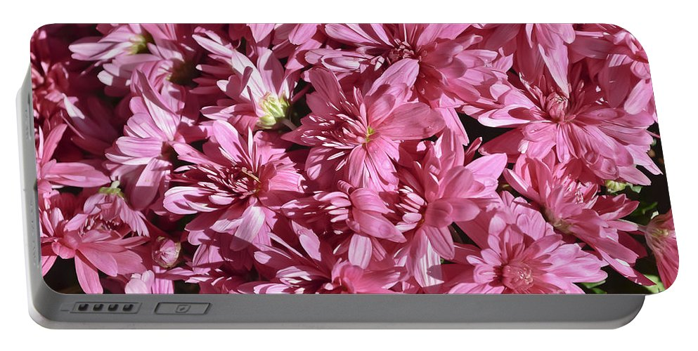 Plants Portable Battery Charger featuring the photograph Beauty Of Pink by Elvis Vaughn