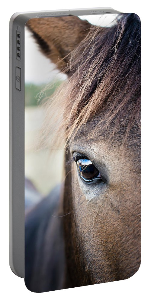 Horse Portable Battery Charger featuring the photograph Beauty by Swift Family