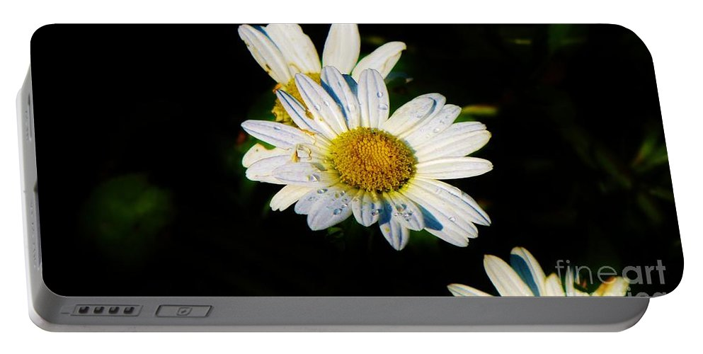 Daisy Portable Battery Charger featuring the photograph Bed Of Daisy's For Daisy by Keri West