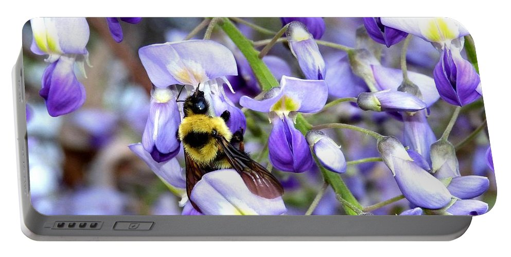 Bee In The Wisteria Portable Battery Charger featuring the photograph Bee In The Wisteria by Will Borden