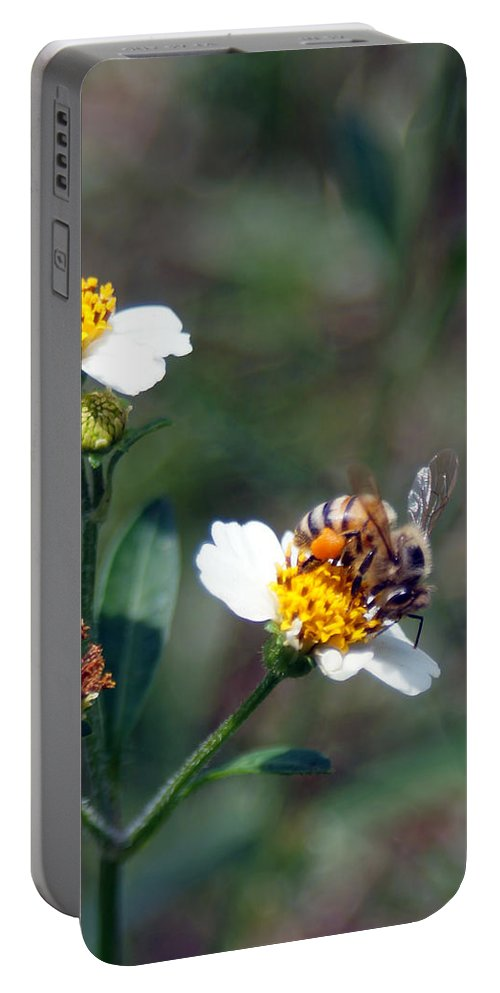 Nectar Portable Battery Charger featuring the photograph Bee- Nectar by Miguel Hernandez