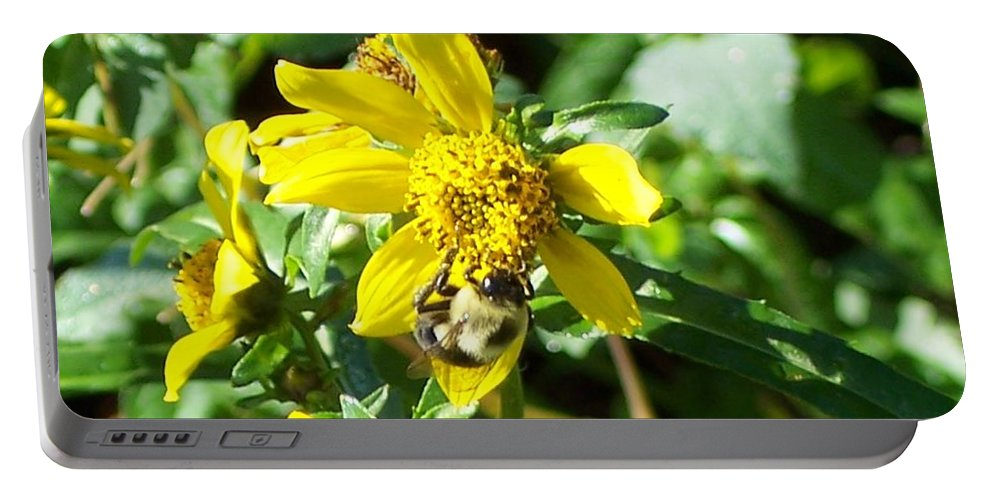 Bee Portable Battery Charger featuring the photograph Bee On Flower by Michelle Miron-Rebbe
