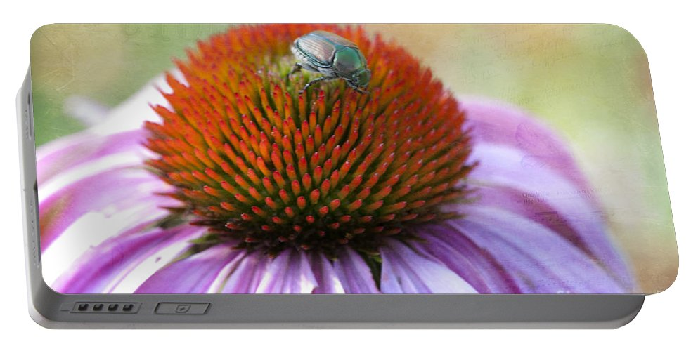 Beauty In Nature Portable Battery Charger featuring the photograph Beetle Bug by Juli Scalzi