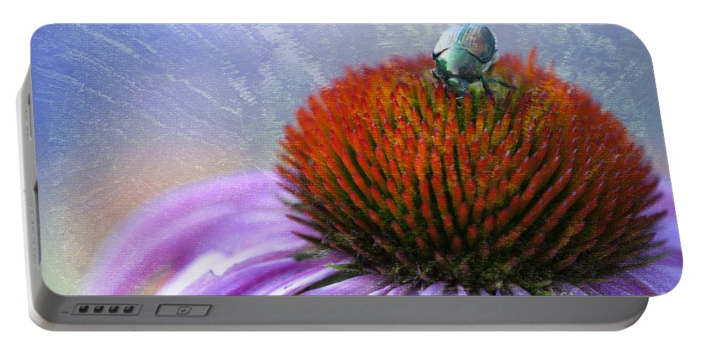 Beauty In Nature Portable Battery Charger featuring the photograph Beetlemania by Juli Scalzi